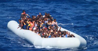 Immigrazione, FdI: Forze armate a presidiare confini. Presentato emendamento a dl sicurezza bis